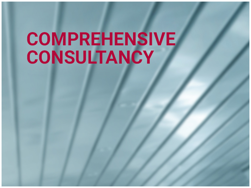 COMPREHENSIVE CONSULTANCY